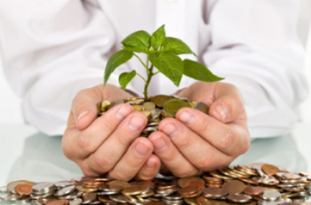 Hands holding coins with plant growing